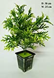 N.Magic Creations Artificial Bonsai Plant Tree Green Grass Two Color Leaves with Pot Natural, Gifting Purpose.