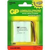 GP/CIPA T160 Accessoire photo et vidéo Batterie pour TSF T160
