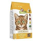 DeliCatessen trockenfutter Kitten Pollame, 1er Pack (1X 2kg)
