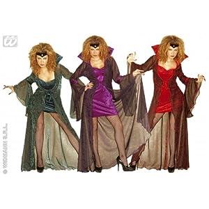 WIDMANN Mystic Mistress Adult Costume Velvet Costume