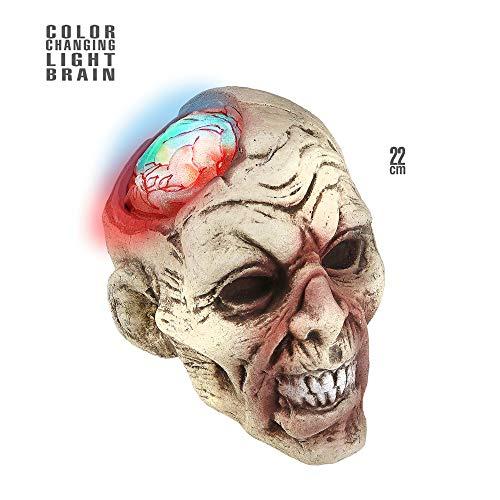 Widmann 04876 Zombiekopf mit farbänderndem Gehirn 22 cm