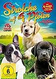 Strolche auf 4 Pfoten - Die schönsten Hundespielfilme [3 DVDs]