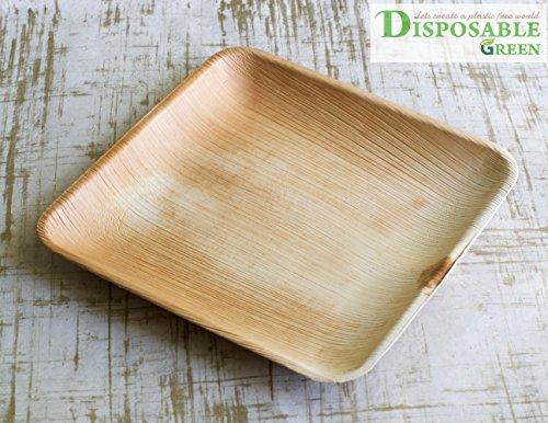 Lot de 25 assiettes, respectueux de l'environnement Assiettes jetables fabriqués à partir de Palm Leafs – Carré de 25 cm, solide, élégant