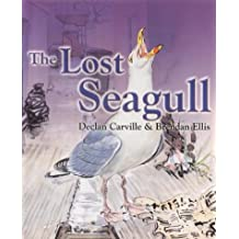 The Lost Seagull