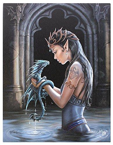 Drago di Anne Stokes, Poster, multicolore, 50 x 70 cm