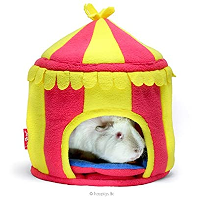 HAYPIGS Guinea Pig Toys and Accessories - Circus Themed Fleece HIDEY HUT Guinea Pig House - Guinea Pig Hideaway… 2