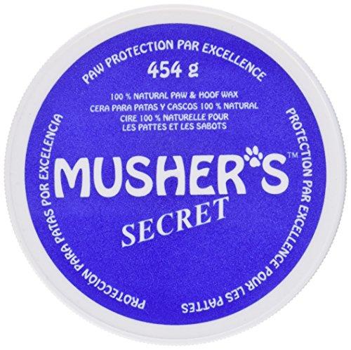 mushers-secret-pfotenschutz-schutz-der-pfoten-vor-sand-heiem-asphalt-eis-salz-wie-unsichtbare-schuhe
