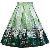 Amphia - Karneval-Print-Rock für Damen,Damen Vintage A-Linie Floral hohe Taille gedruckt Plissee ausgestelltes Kleid Midi Röcke(Grün,XL)
