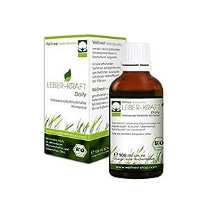 Leber-Kraft Daily – Bio Kräuter-Konzentrat mit Mariendistel, Kurkuma und Scharfgabe und weiteren wertvollen Leberkräutern 100 ml
