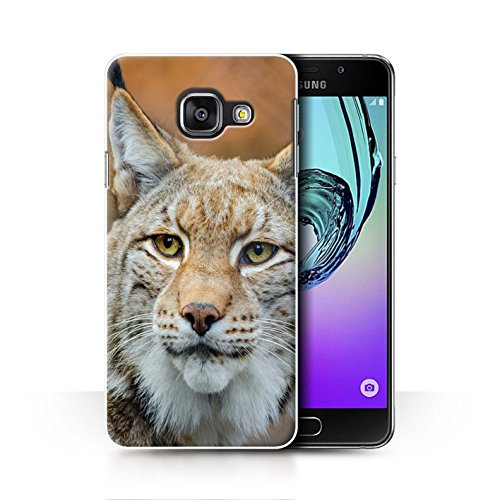 stuff4-phone-case-cover-for-samsung-galaxy-a3-2016-lynx-bobcat-design-north-america-animals-collecti