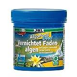 JBL Algo Pond Direct 27355 Aktivsauerstoff zur Bekämpfung von Fadenalgen im Gartenteich, 250 g