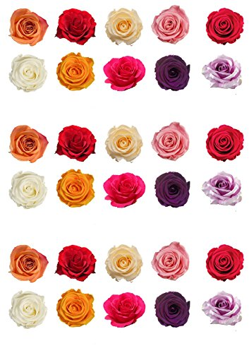 Top That 30Jolis Couleurs mélangées Rose Fleur en Papier Comestible pour décoration de gâteau PDF Books