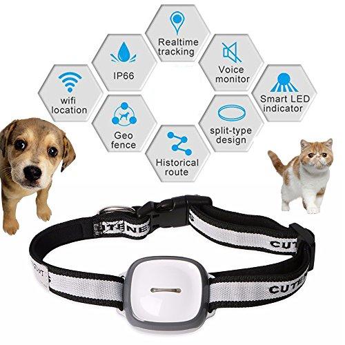 dax-hub-mini-gps-tracker-for-small-pet-dog-puppy-cat-fashion-web-wifi-enabled-qr-code-gprs-tracer-lo