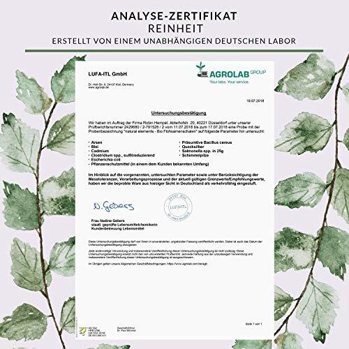 Bio Flohsamenschalen – Premium Qualität – 500g Beutel - 3