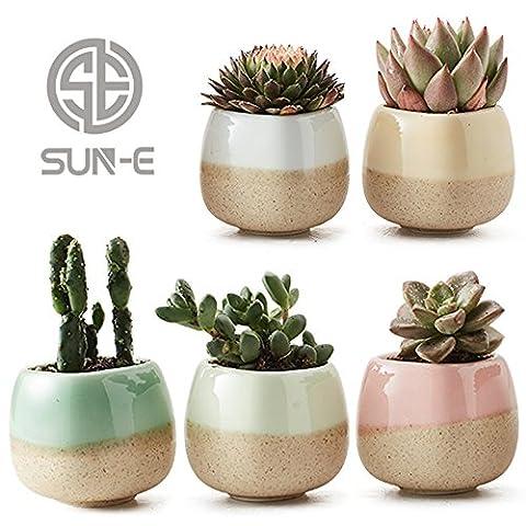 Sun Kit de E 5dans 5.6cm Récipient à bulbe Set de vernis finition Cinq Base Serial de couleurs en céramique Plantes Succulentes Pot Cactus Pot Pot de fleurs