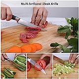 Deeplee AKZIM 6-teilig Steakmesser Set, 23 cm Edelstahl Steakmesser mit Ergonomischem Griff und Fein Gezahnte,Geschenkbox - 6