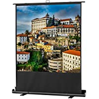 Celexon 1090361 1:1 projection screen - projection screens (Manual, 152 cm, 152 cm, 1:1) - Confronta prezzi