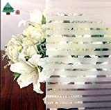Lifetree 105 Casa pellicole per vetri privacy pellicola film statico adesiva /45 * 200cm