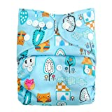 Baby Grow Carters All in One Reusable Diaper One Size Nappy 0-24 months (Blue/Owl)