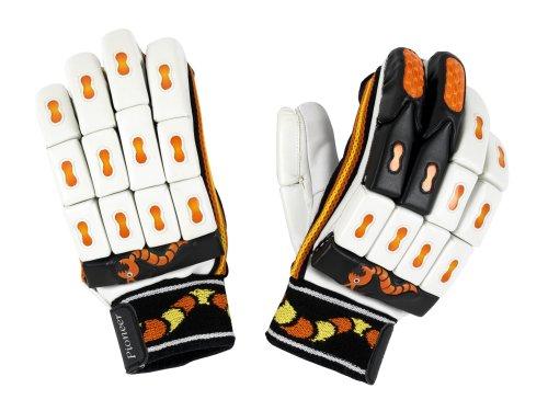 Woodworm Cricket-Handschuhe/Batting Gloves, Links-Pioneer 2007 Small (Jungen)