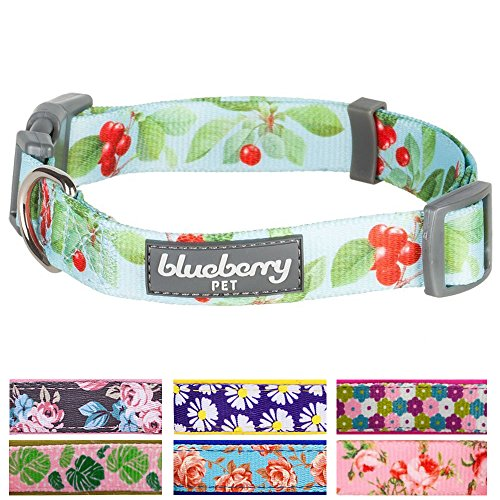 blueberry-pet-hundehalsband-kirschgarten-turkis-designer-15-cm-s-basic-polyester-nylon-hundehalsband