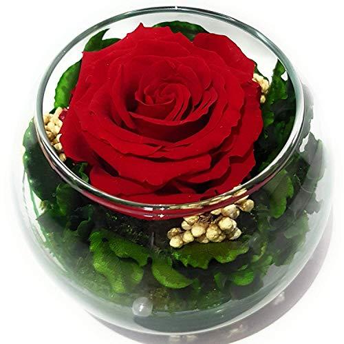 Rosen-te-amo Blumen-Strauß in der Kugel Vase aus ECHTE Blumen mit eine haltbare-Rose – Das Geschenk für die Freundin