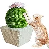 Arbre à chat Jouets for Les Chats interactifs - drôle Cactus Flower Board Cat Scratching Pet Grattez Poster