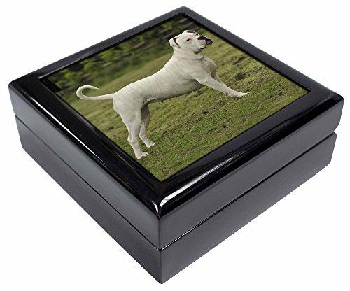 Advanta - Jewellery Boxes American Staffordshire Bull Terrier Hund Andenken/Schmuck Box Weihnachten Geschenk (Terrier Hund Bull Schmuck)