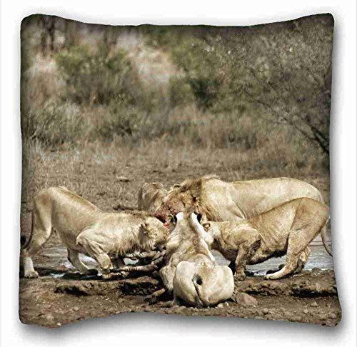 custom-characteristic-animals-lions-carcasss-zebra-food-predators-popular-16x16-inch-one-side-pizza-