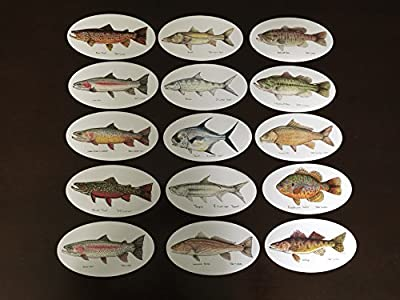 Ultimate Fish Decal Package 15 Decals, Jeff Currier Fish Stickers - Vinyl and Waterproof - Perfect Fishing Gift - Fly Fishing Bumper Sticker, Bass, Trout, Walleye, Tarpon, Bonefish, Permit, Carp from Pescador on the Fly