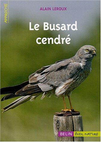 Le Busard cendré par Alain Leroux