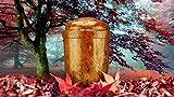 """Biologisch abbaubar Verbrennung Asche urn- Erwachsene Größe–Umweltfreundlich–""""Natur Walnuss Design"""""""