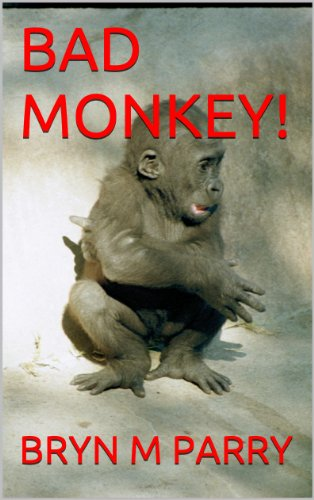 BAD MONKEY! (John of Swineford Book 3)