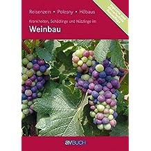 Krankheiten, Schädlinge und Nützlinge im Weinbau