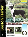 Boston Terrier (Excellence-Raza especial)