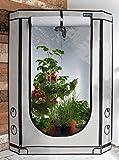 Homebox Vista Triangle + Zimmergewächshaus–Grow Zelt für Pflanzen