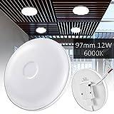12W Lámpara de techo,LED Foco LED para techo y pared,Luz de techo led blanco frío para la sala, la cocina el salón, el balcón
