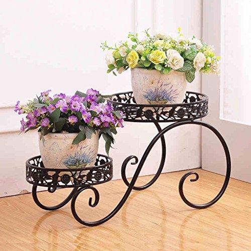 CS Grille de fleur de fer noir intérieur fenêtre de fenêtre de la viande de petites plantes de style simple de fleur (Size : M)