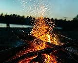 30 kg Sommerholz Esche 25cm trocken Ideal für Lagerfeuer, Feuerschalen, Opferschalen. Nahezu frei von Funkenflug, hoher Brennwert