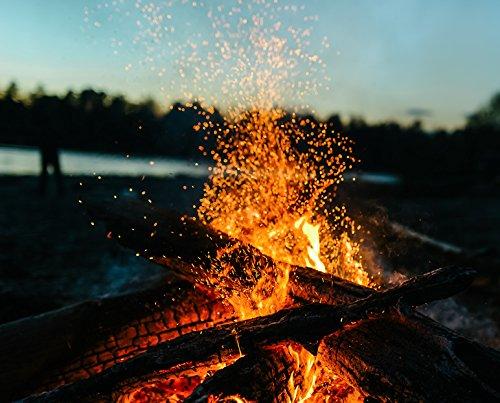 Preisvergleich Produktbild 30kg Sommerholz Esche 25cm trocken -LIEFERUNG KOSTENLOS- Das Lagerfeuerholz für besinnliche Momente in lauen Sommernächten! Esche stellt das ideale Holz für Feuerschalen, Opferschalen, Lagerfeuer dar. Eschenholz ist nahezu frei von Funkenflug, hat einen hohen Brennwert und zeigt eine intensive Flamme.