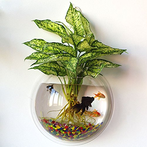 Outgeek Acrylic Fish Bubble Wall Hanging With Flower Vase Plant Pot