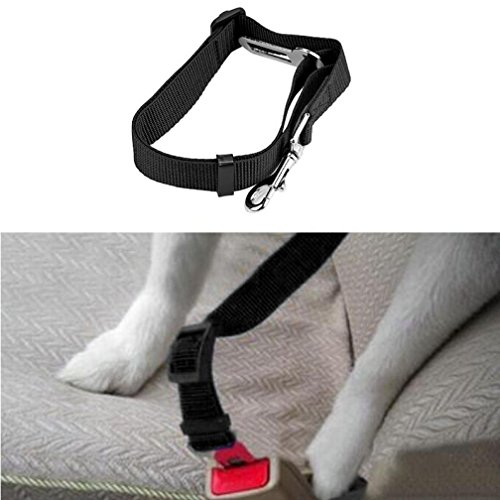 wuayi NEU Fahrzeug Auto Sicherheitsgurt Sicherheitsgurt Nylon Stoff blei Clip Pet Cat Safety Dog (Angel Bekleidung Kinder Kleinkind)