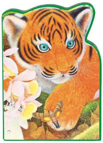 Tavi le tigre : L'Inde