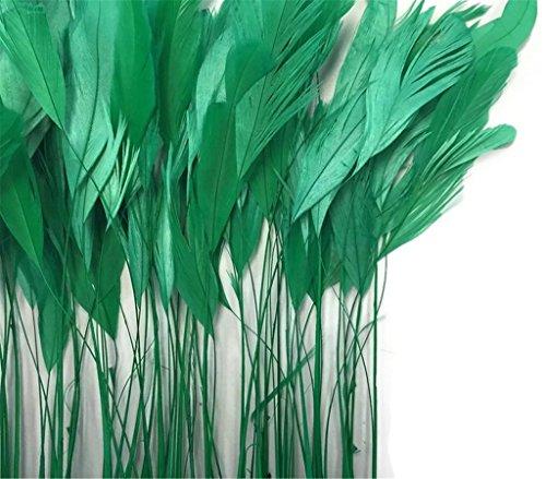ERGEOB schwarz abgestreift Coque Schwanz Federn 10-15cm/4-6 Zoll Länge Basteln Material Kopfschmuck Brosche Material grün