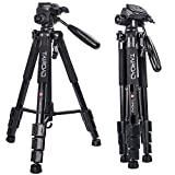 Lightweight Tripod - Tairoad Compact Light Tripod with Ball Head and Quick Release Plate for Digital SLR Canon EOS Nikon Sony Panasonic Samsung - Black