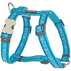 Red Dingo GmbH 9330725065635Petral Chien Butterfly, S, Turquoise