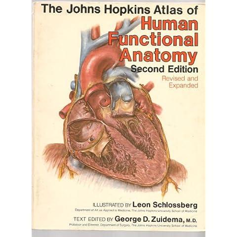 Johns Hopkins Atlas of Human Functional (Johns Hopkins Atlas)