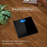 Hesley Digital Weighing Scale with Advan...