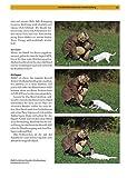 Parson und Jack Russell Terrier: Auswahl, Haltung, Erziehung, Beschäftigung (Praxiswissen Hund) - 9