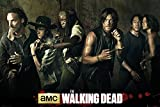 empireposter - Walking Dead, The - Season 5  - Größe (cm), ca. 91,5x61 - Poster, NEU -